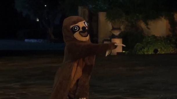 sloth bachelor.jpg